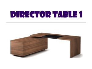Director Table 1