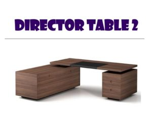 Director Table 2