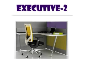 Panel System Furniture - Executive 2