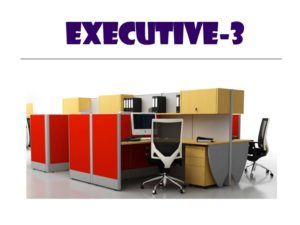 Panel System Furniture - Executive 3